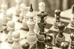 Two chess pieces of kings on a wooden Board, surrounded by other chess pieces. The concept of same-sex love
