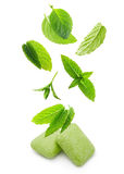Two chewing gum with mint leaves Stock Image