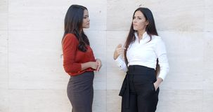 Two chic young women standing chatting. Two chic relaxed young women standing chatting together in front of a white exterior wall with bilateral copyspace  three stock footage