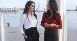 Two chic young women standing chatting stock video footage
