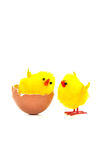 Egg with toy chickens. Two chicken egg  isolate on white background Royalty Free Stock Photography