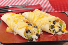 Two Chicken Enchiladas Royalty Free Stock Photography