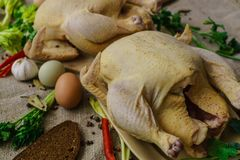 Two chicken from a home farm cooked for roasting in the oven stock image