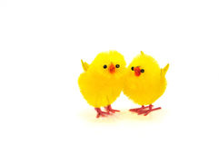 Toy chickens. Two chicken isolate on white background Stock Images