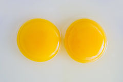 Two chicken Raw egg yolks Royalty Free Stock Photo