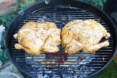 Two chicken roasted Royalty Free Stock Images