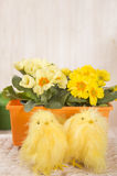 Two chickens on a background of flowers. Not real but very cute Royalty Free Stock Photo