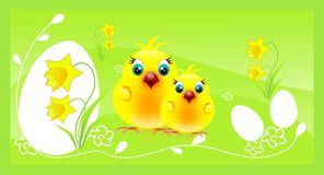 Two chickens on easter background Stock Photo