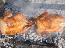 Two chickens roasting on grill Stock Photos