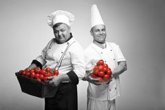 Two chief with tomato stock photo