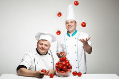 Two chief with tomato royalty free stock photos