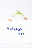 Two childhood hands holding white board with blue text Mothers day and one white and violet tulip. Horizontal Royalty Free Stock Images