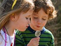 Two Children. A set of boy/girl twins enjoying nature Stock Image