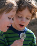 Two Children. A set of boy/girl twins enjoying nature Royalty Free Stock Photos