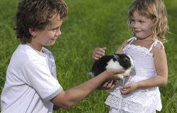 Two children. On green grass with rabbit Stock Images