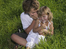 Two children. Sitting on green grass telling a secret Royalty Free Stock Images