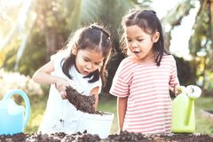 Two children asian little girl having fun to prepare soil. For planting seedling young tree together in vintage color tone Royalty Free Stock Photography