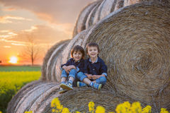 Two children, boy brothers in a oilseed rape field, sitting on a Royalty Free Stock Image