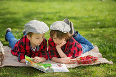 Two children, boy brothers, reading a book and eating strawberri Stock Images