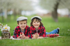 Two children, boy brothers, reading a book and eating strawberri Royalty Free Stock Photos