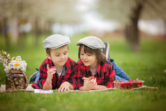Two children, boy brothers, reading a book and eating strawberri Royalty Free Stock Photo