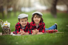 Two children, boy brothers, reading a book and eating strawberri Stock Photography