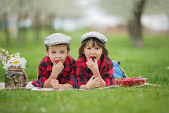 Two children, boy brothers, reading a book and eating strawberri Royalty Free Stock Image