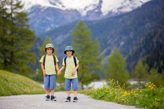 Two children, boy brothers, walking on a little path in Swiss Al. Ps, hiking mountain with backpacks, gathering herbs and flowers Stock Photo