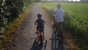 Children with bike in park. Two children brothers play with the bikes in a park in a dusty road stock footage
