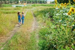 Two children with a butterfly net walk through the countryside stock images
