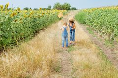 Two children with a butterfly net walk through the countryside royalty free stock photography