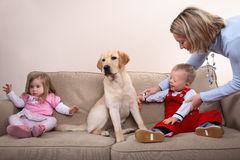 Two children and a dog stock images