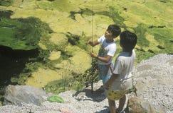 Two children fishing. In Malibu California stock images
