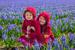 Two children in the flowering field of hyacinths. Stock Photos