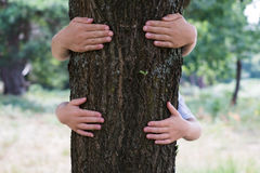 Two children hag or embracing a tree trunk. Love nature Royalty Free Stock Photo