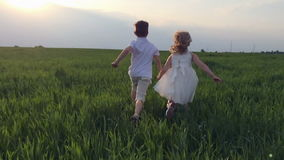 Two children hands running through green field at stock video