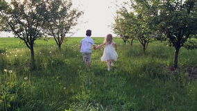 Two children hands running in a spring garden into stock video