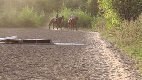 Two children have been horseback riding at stables. Two children of five and ten years engaged in equestrian sports on a horse farm stock footage