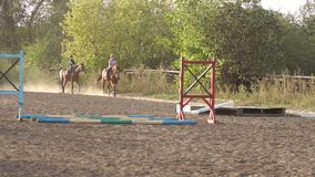 Two children are engaged in equestrian sport. stock video footage