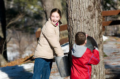 Two children looking in a maple sap bucket Royalty Free Stock Images