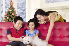 Two children and mother playing dog on sofa Stock Photo