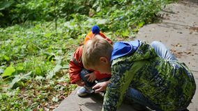 Two children in the park examine plants and insects through a magnifying glass. Study of the outside world, pre-school. Two children in the park examine plants stock video