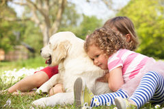 Two Children Petting Family Dog In Summer Field. Outside Stock Photos