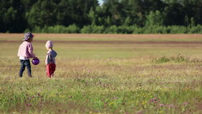 Two children playing with a ball in the field. Small children spend their time in the field, having fun playing ball, rejoice stock video