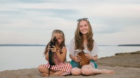 Two children playing which dogs on the sand on the beach. Kid play with dogs. They squeeze them, throw them up. The girls are wearing sunglasses. Dogs Toy Royalty Free Stock Photos