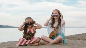Two children playing which dogs on the sand on the beach. stock photography