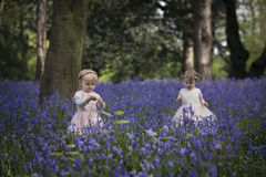 Two children playing in a wood full of bluebells Stock Photography