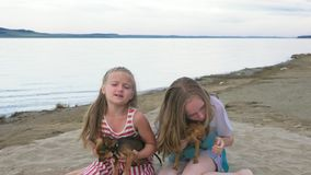 Two children skate sitting on the sand on the beach. Kid play with dogs. They squeeze them, throw them up. The girls are wearing sunglasses. Dogs Toy Terrier stock video footage
