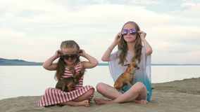 Two children skate sitting on the sand on the beach. Kid play with dogs. They squeeze them, throw them up. The girls are wearing sunglasses. Dogs Toy Terrier stock video