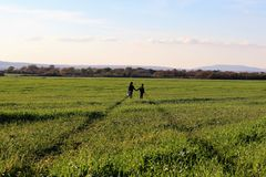 Two children are standing in the green path in the field royalty free stock image